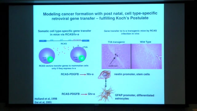 Eric Holland: Preclinical trials in mouse models of brain tumors