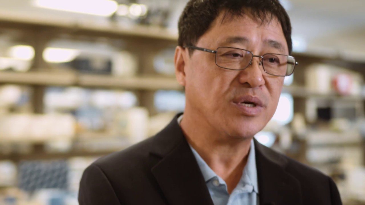 Cancer Research: ACGT & Dr. Lieping Chen