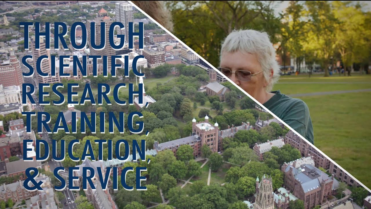 About the Yale School of Public Health