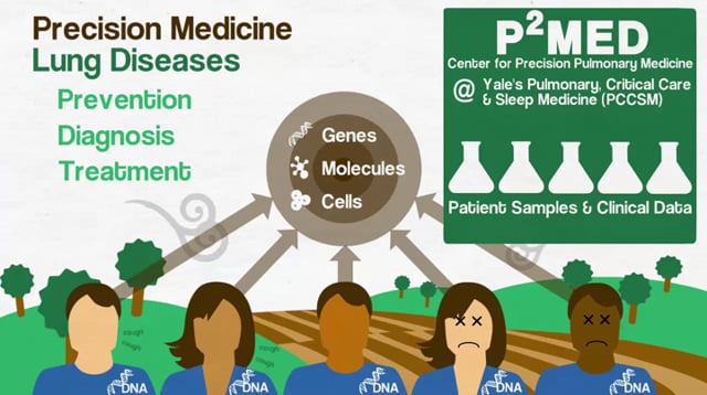 P2MED Homepage Video