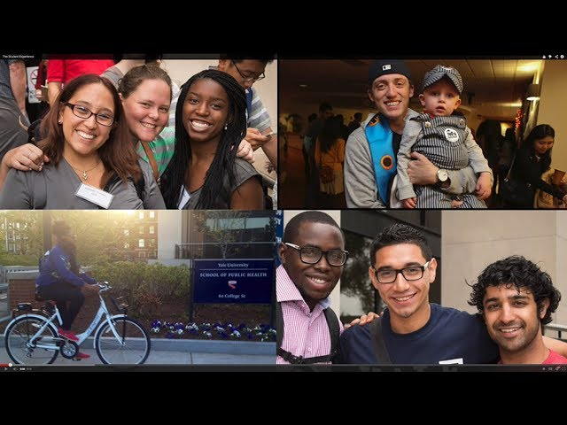 The YSPH Student Experience