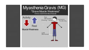 What is Myasthenia Gravis?